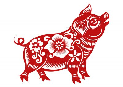 Willkommen im Erde-Schwein Jahr 2019