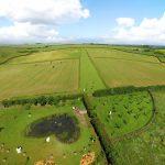 Shire Farm Aura-Soma